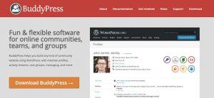 18 Best BuddyPress WordPress Themes: To Make Social & Community Sites