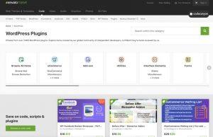 How to Create a Custom WordPress Plugin From Scratch